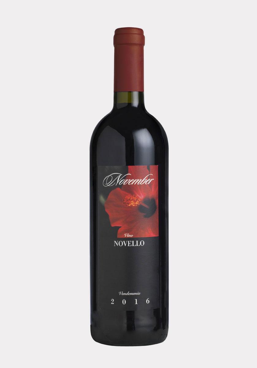 November novello Merlot IGT Veneto